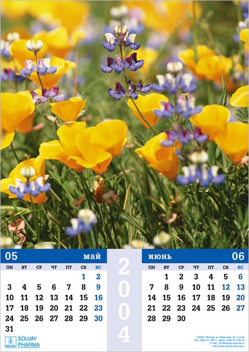 Настенный календарь А2 для SOLVAY