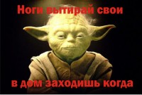 f_920558a9788b9587.jpg