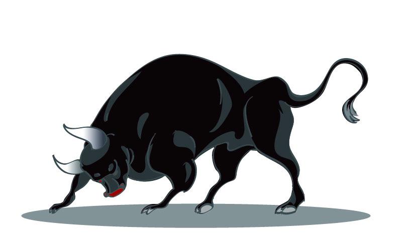 рисунок быка /вектор/
