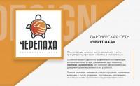 """Дизайн логотипа партнерской сети """"Черепаха"""""""