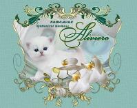 Питомник британских кошек «Aliviero»