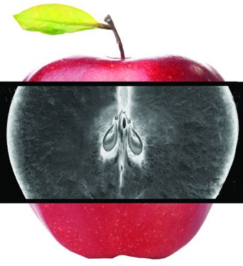 Логотип для сайта фото f_83654ca2e0ca7d80.jpg