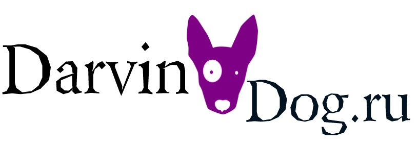 Создать логотип для интернет магазина одежды для собак фото f_081564a34b016a2e.jpg