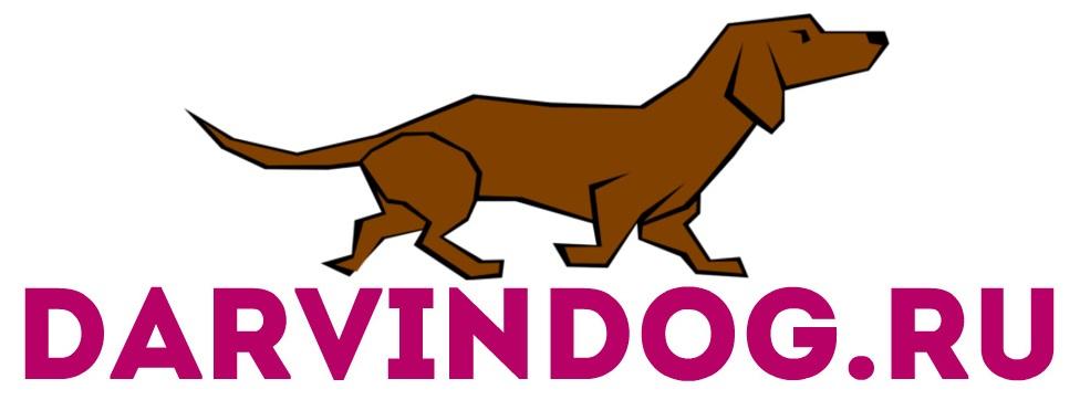 Создать логотип для интернет магазина одежды для собак фото f_540564a332bce6ee.jpg
