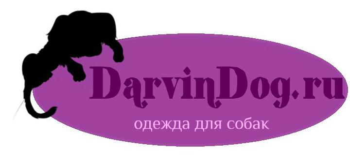 Создать логотип для интернет магазина одежды для собак фото f_793564a33971c3f4.jpg
