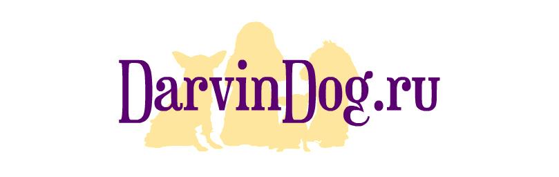Создать логотип для интернет магазина одежды для собак фото f_951564a57d7cc89f.jpg