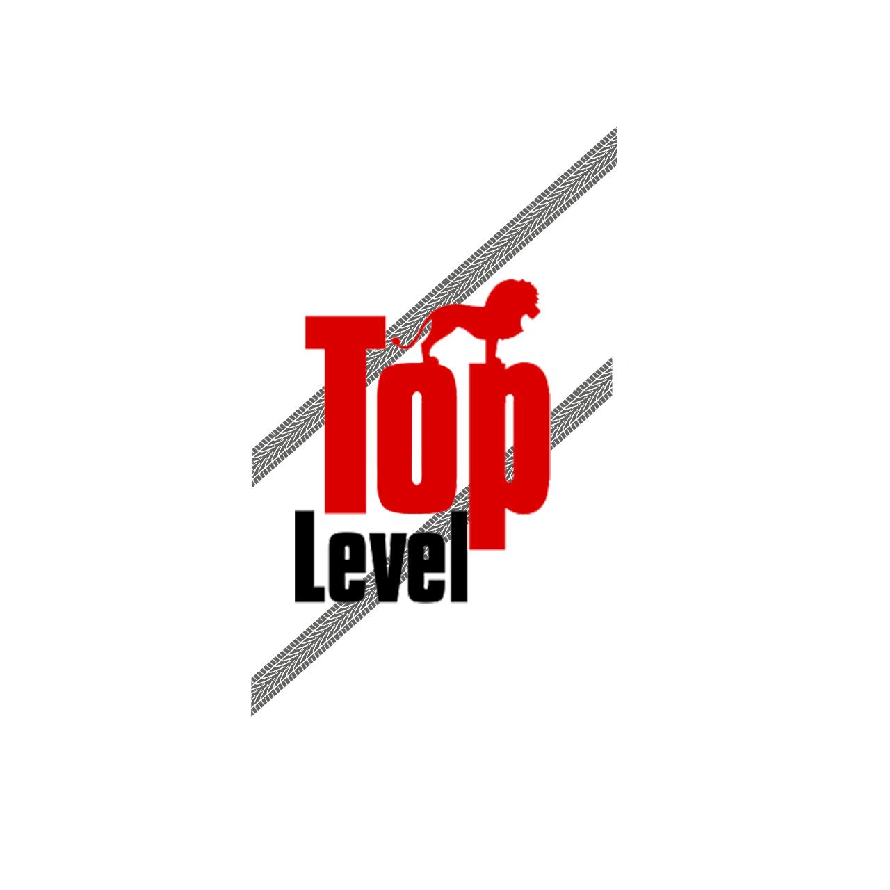 Разработка логотипа для тюнинг ателье фото f_7965f3166aa2e954.png