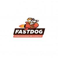 Компания FASTDOG