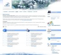 Blizzard (Германия) корпоративный на CMS