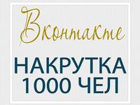 Вконтакте – накрутка 1000 чел – антикризисная цена!