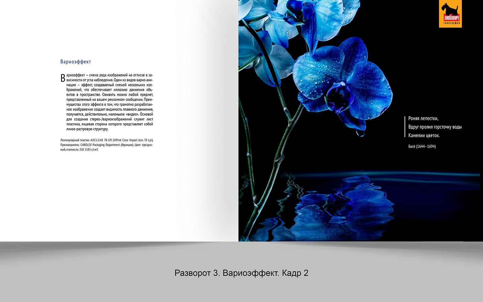 Дизайн рекламной брошюры возможностей типографии фото f_1895648d4cbc079e.jpg