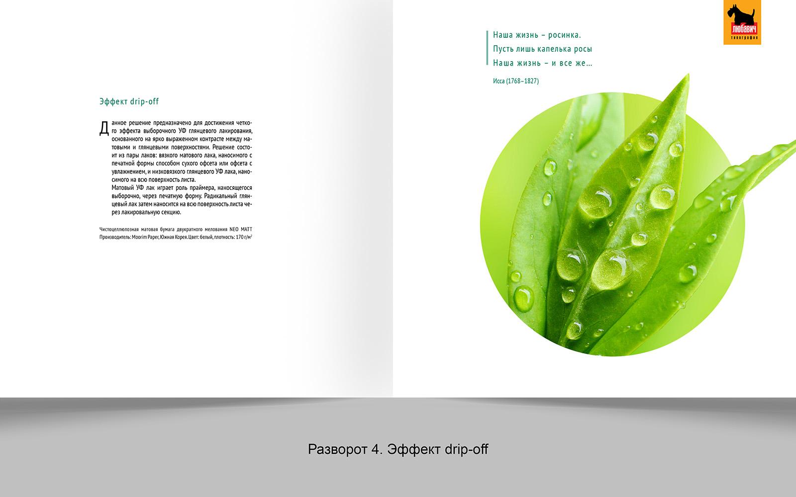 Дизайн рекламной брошюры возможностей типографии фото f_3685648d4ed2a47f.jpg