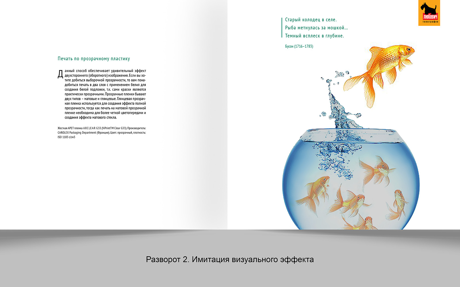 Дизайн рекламной брошюры возможностей типографии фото f_5225648d4b0ad6bb.jpg