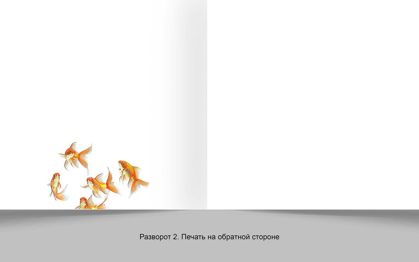 Дизайн рекламной брошюры возможностей типографии фото f_5315648d4a6a66ff.jpg
