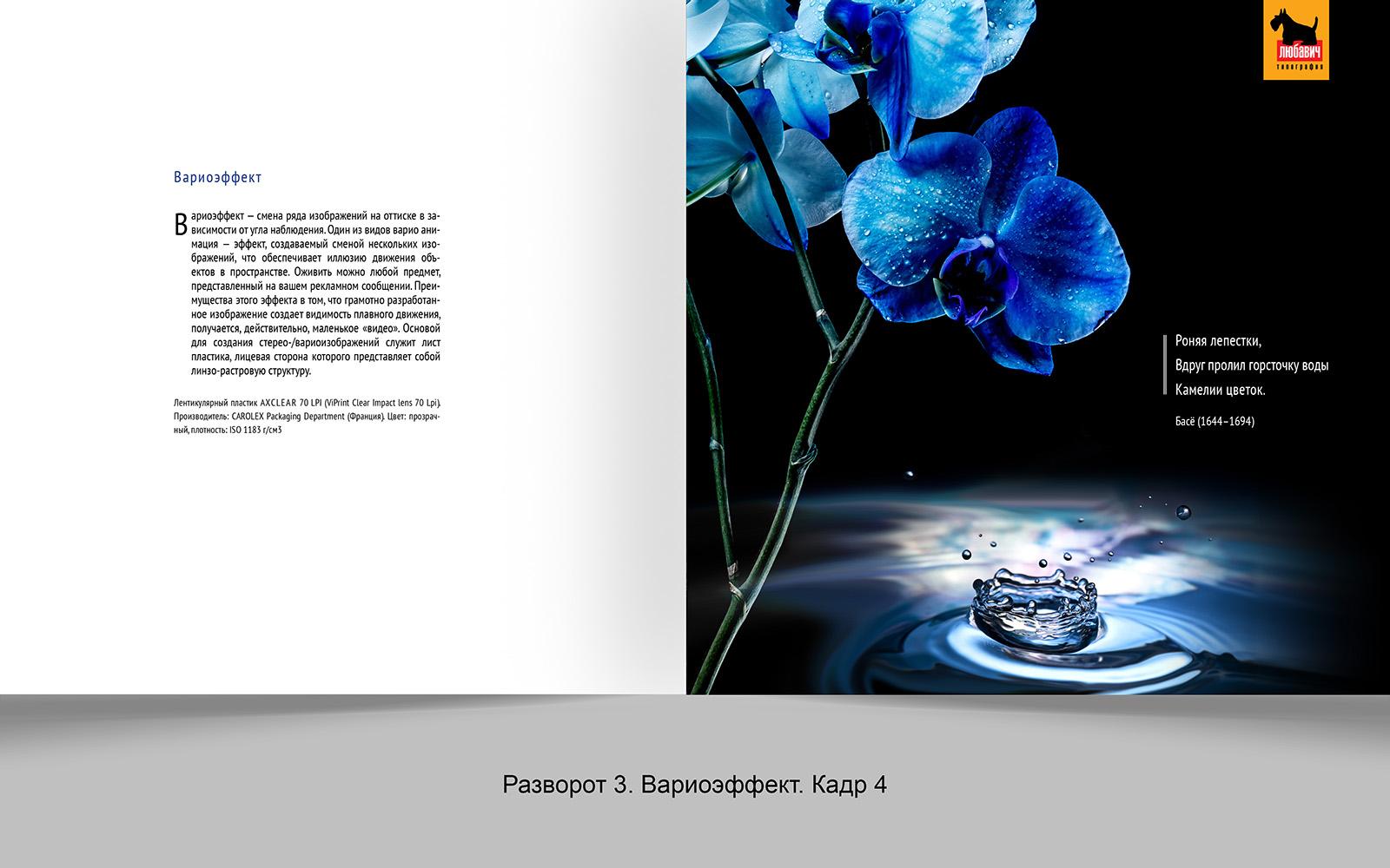 Дизайн рекламной брошюры возможностей типографии фото f_6785648d4dd88f70.jpg