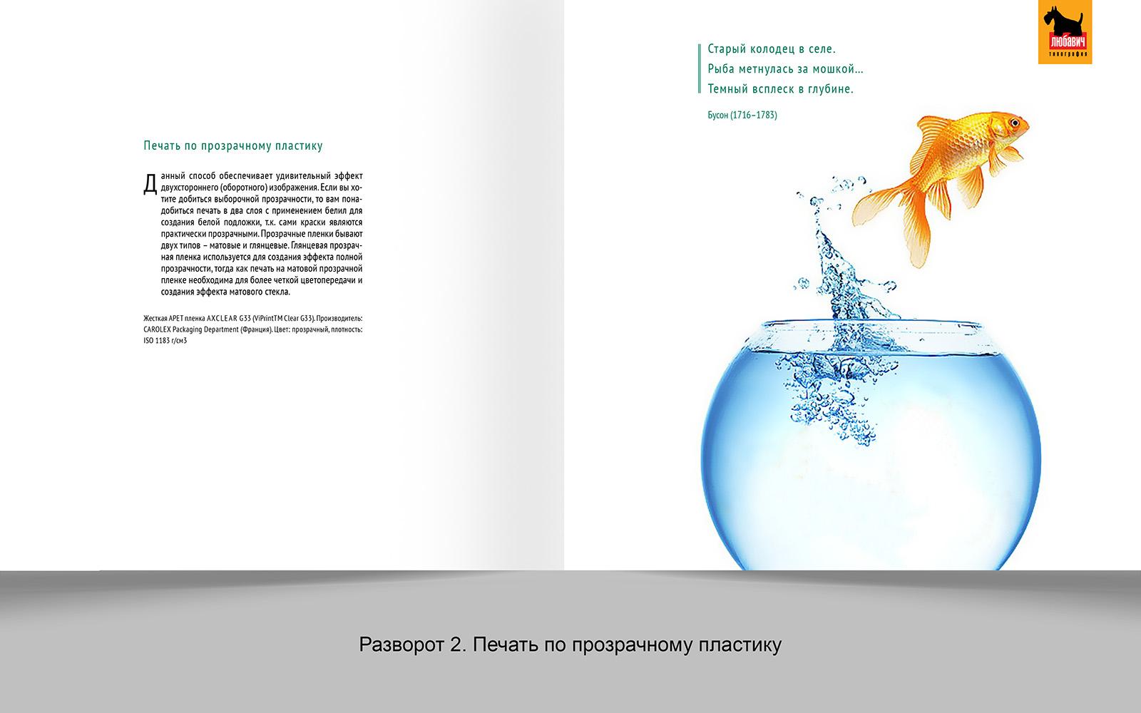 Дизайн рекламной брошюры возможностей типографии фото f_8665648d4a0a88b5.jpg