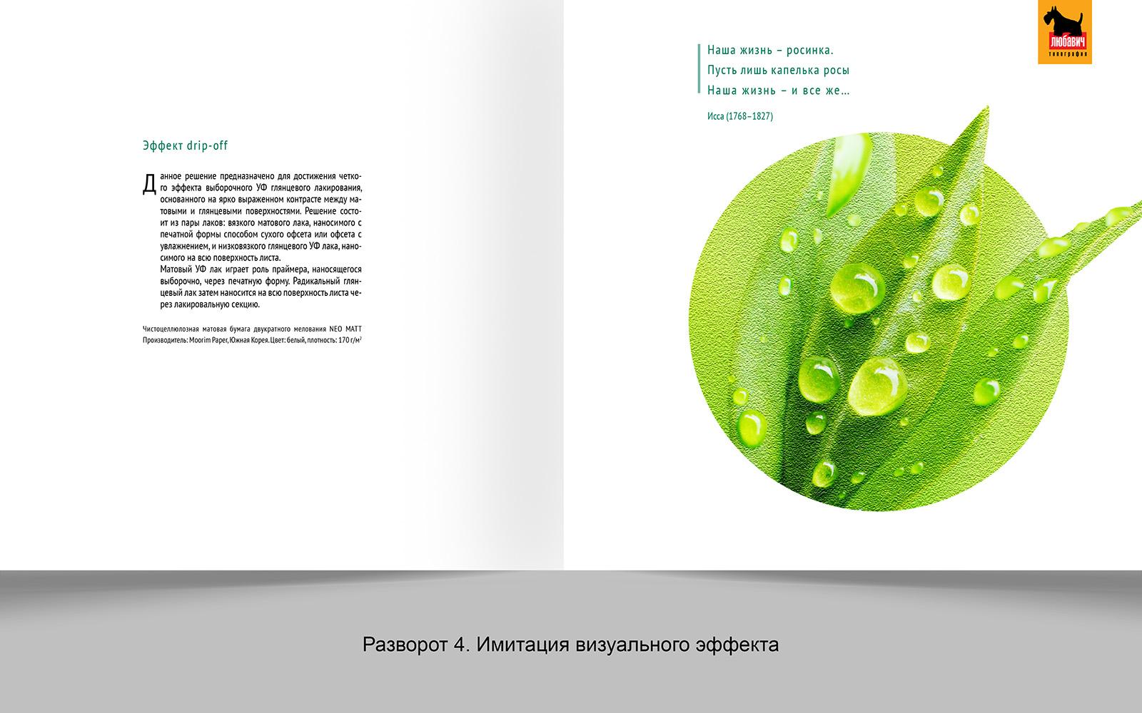 Дизайн рекламной брошюры возможностей типографии фото f_9455648d4f448f15.jpg
