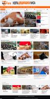 """Информационный портал """"To fox"""" на WordPress"""
