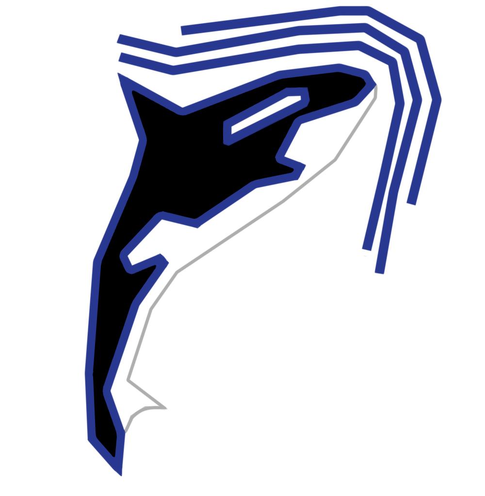 Разработка фирменного символа компании - касатки, НЕ ЛОГОТИП фото f_2965afed9e9cad00.png