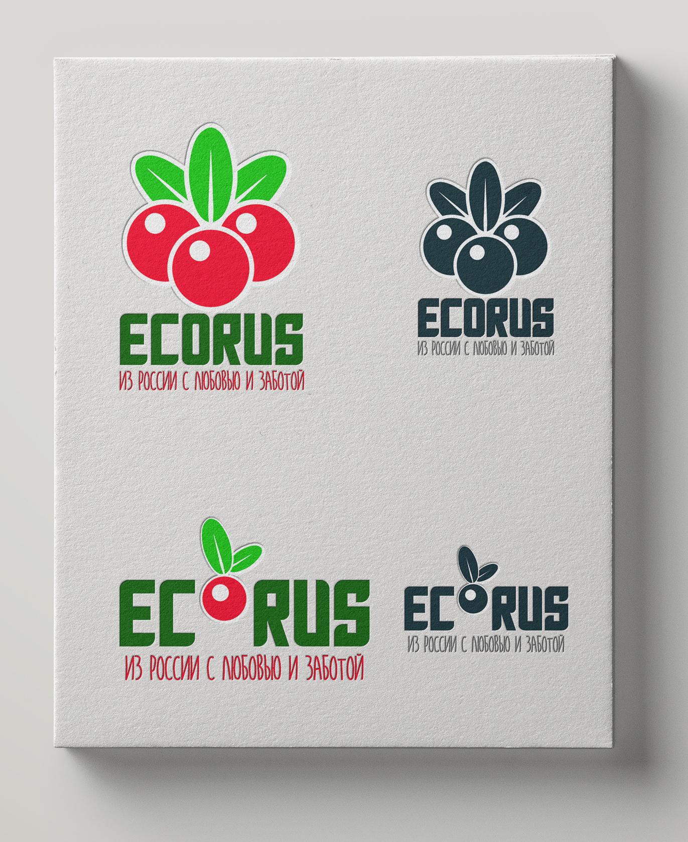 Логотип для поставщика продуктов питания из России в Китай фото f_0995eac9c8ecab59.jpg