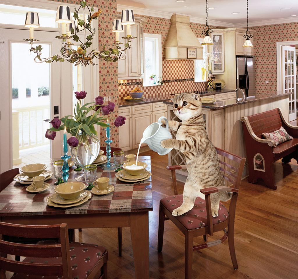 Создать интересный коллаж с участием животных фото f_07451d6ca3f47b5b.jpg