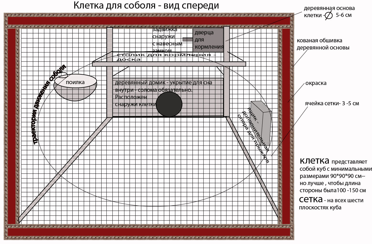 Дизайн конструкции для размещения в ней живого соболя фото f_06857015172c8222.jpg