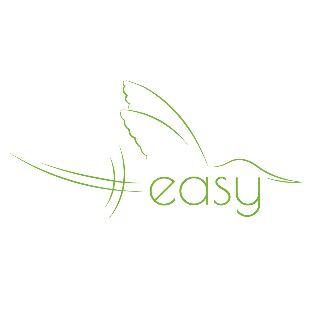 Разработка логотипа в виде хэштега #easy с зеленой колибри  фото f_2935d514049c5a93.png