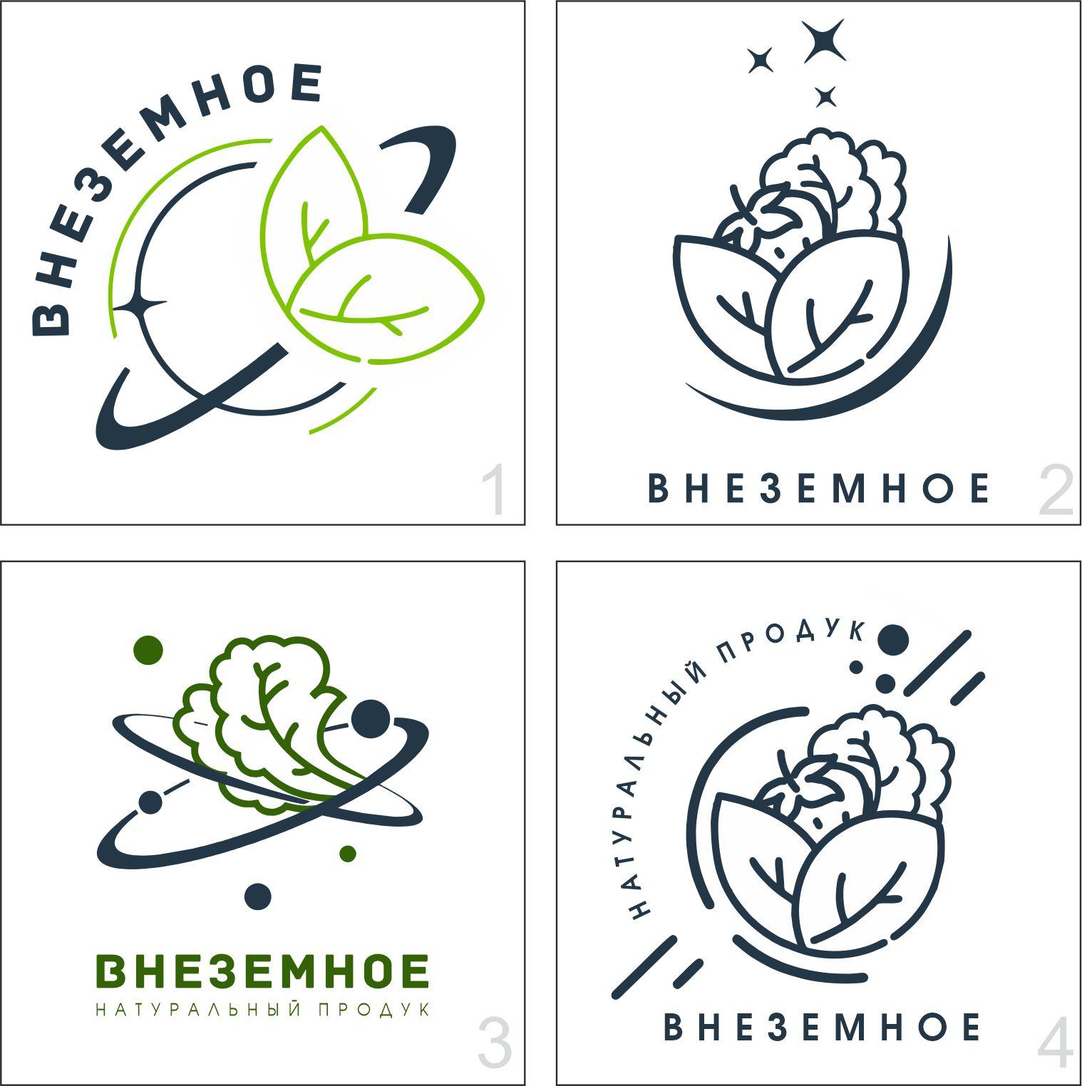 "Логотип и фирменный стиль ""Внеземное"" фото f_1835e77827ae9f33.jpg"