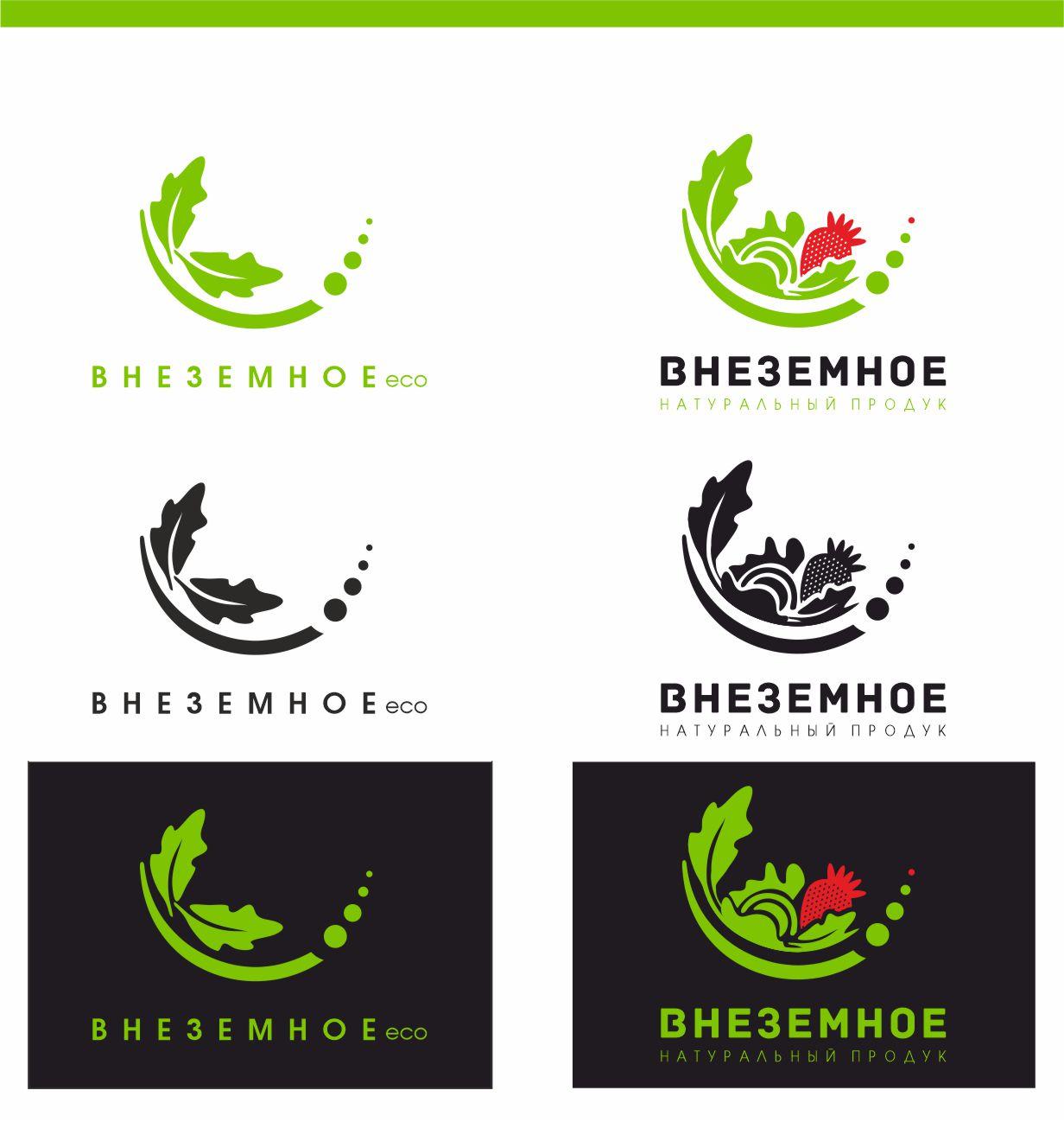 "Логотип и фирменный стиль ""Внеземное"" фото f_9575e75e98182915.jpg"