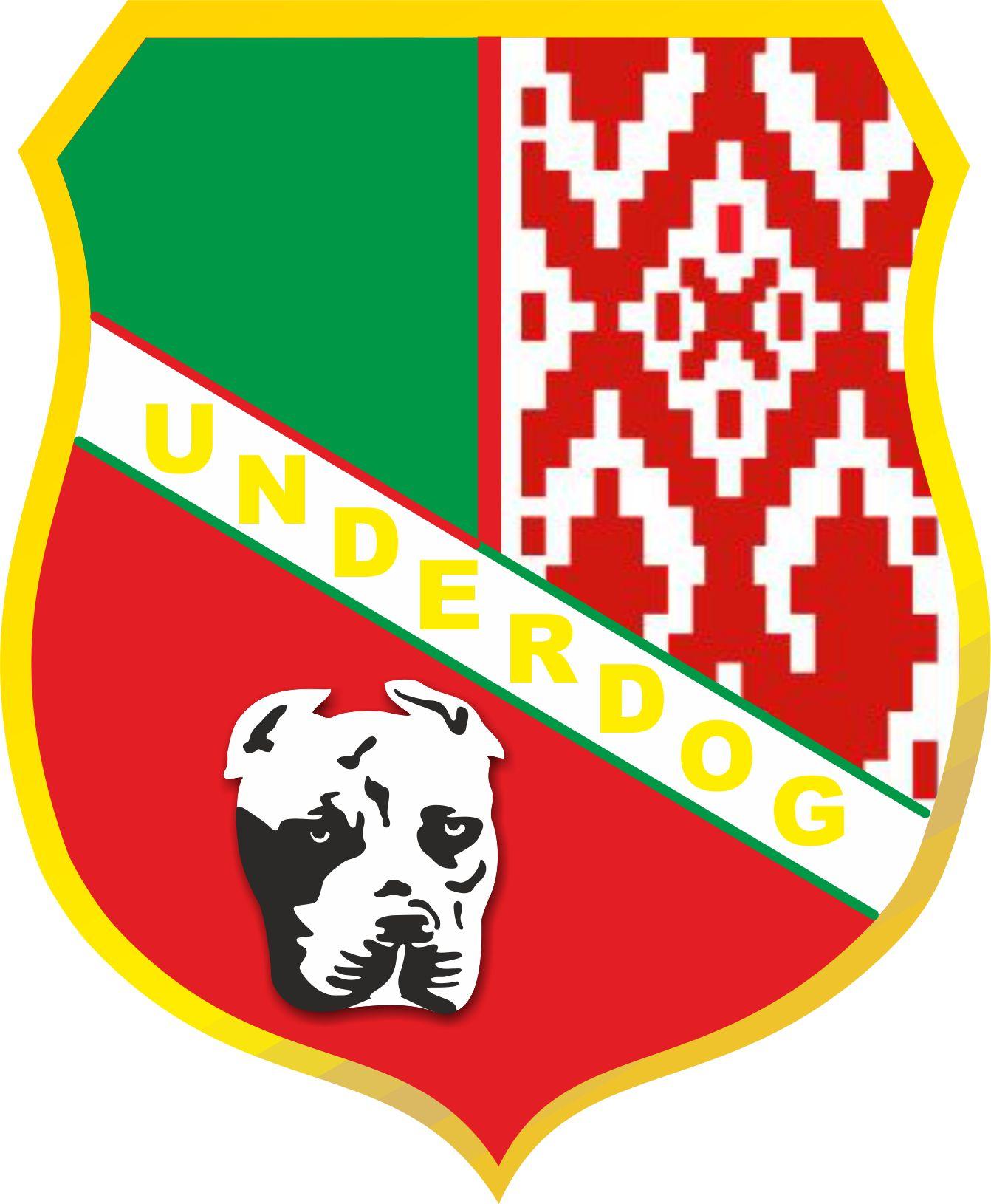 Футбольный клуб UNDERDOG - разработать фирстиль и бренд-бук фото f_1865caf513083499.jpg