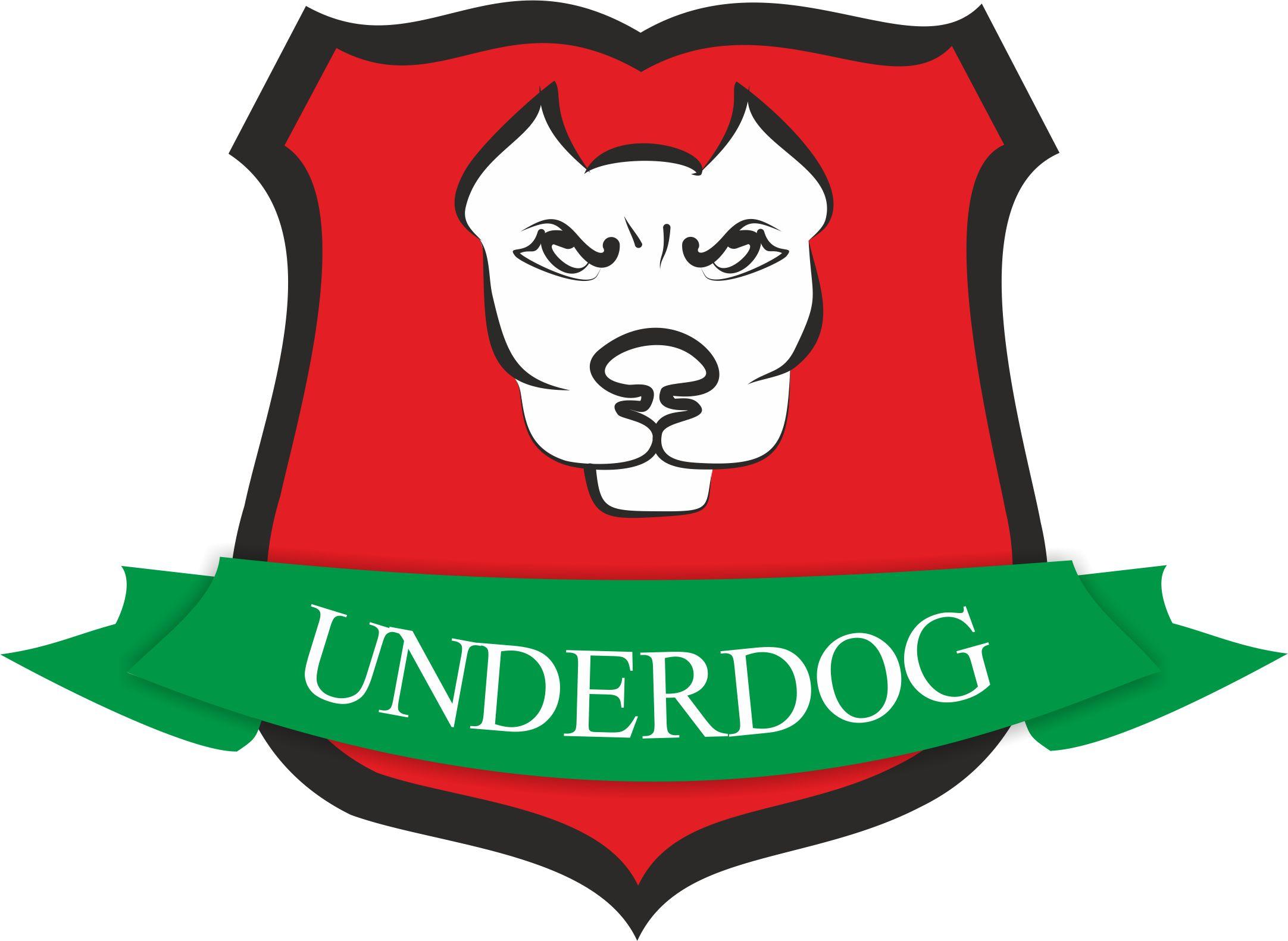 Футбольный клуб UNDERDOG - разработать фирстиль и бренд-бук фото f_3775caf512c67f20.jpg
