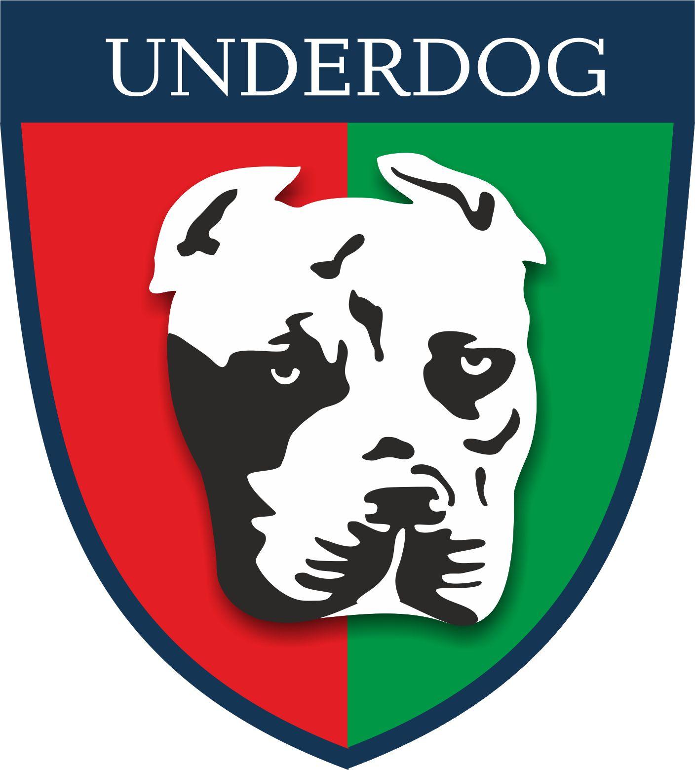 Футбольный клуб UNDERDOG - разработать фирстиль и бренд-бук фото f_8775caf5127f1345.jpg