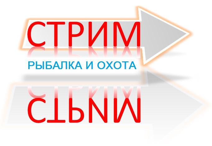 Создание концепции заставки и логотипа (телеканал) фото f_340566daa2e8b11d.jpg