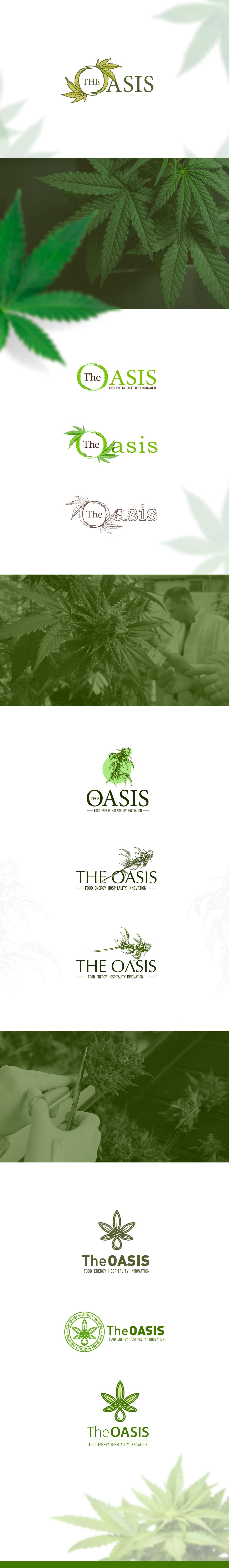 The Oasis – промышленное производство конопли в Америке