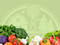 Магазин эко-продуктов в Канаде - Our Farmers Market