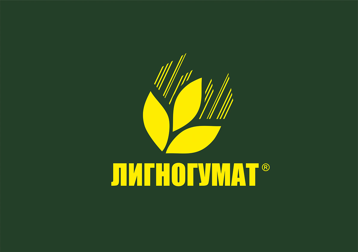 Логотип и фирменный стиль фото f_566594955f129f7d.jpg