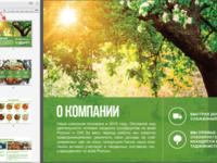 Коммерческое предложение Продажа сухофруктов