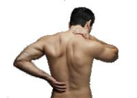 Лечение остеохондроза методом биорезонансной терапии