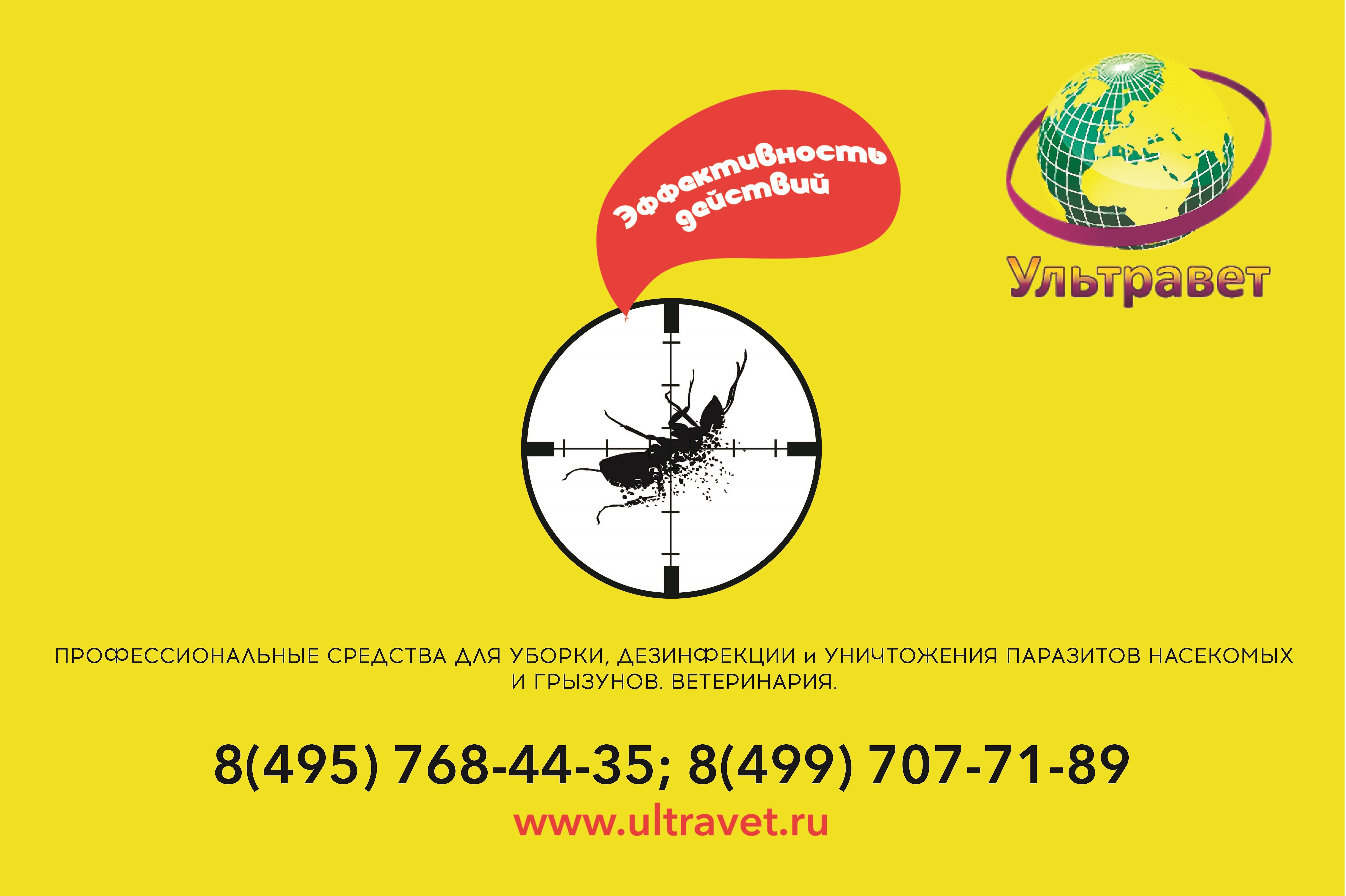 Придумайте дизайн плаката. фото f_641544bd34307087.jpg