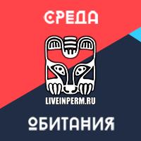 Дизайн новостного сайта liveinperm