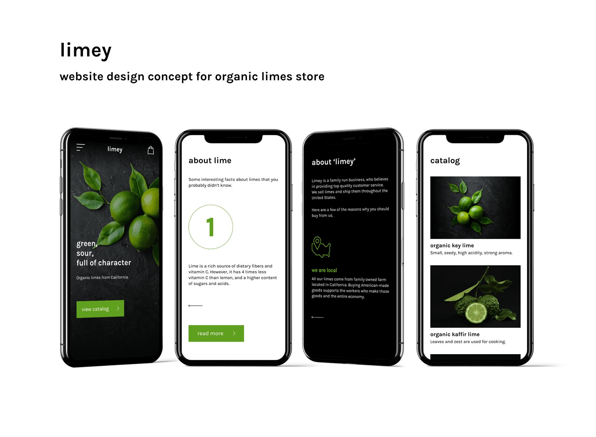 Дизайн сайта интернет-магазина лаймов