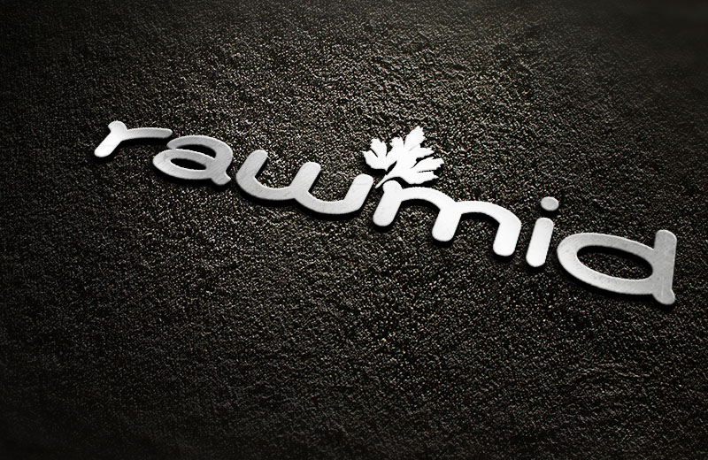 Создать логотип (буквенная часть) для бренда бытовой техники фото f_1265b3621f62d6c9.jpg