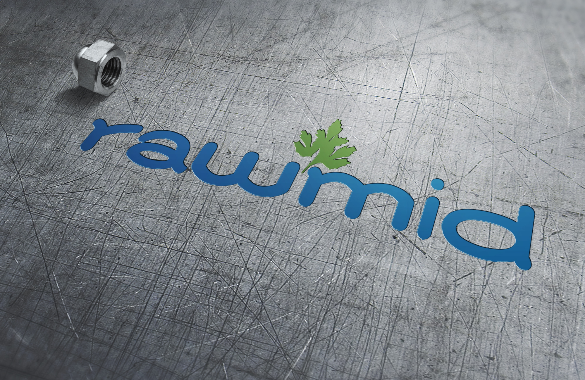 Создать логотип (буквенная часть) для бренда бытовой техники фото f_5065b3621fb7a4b7.jpg