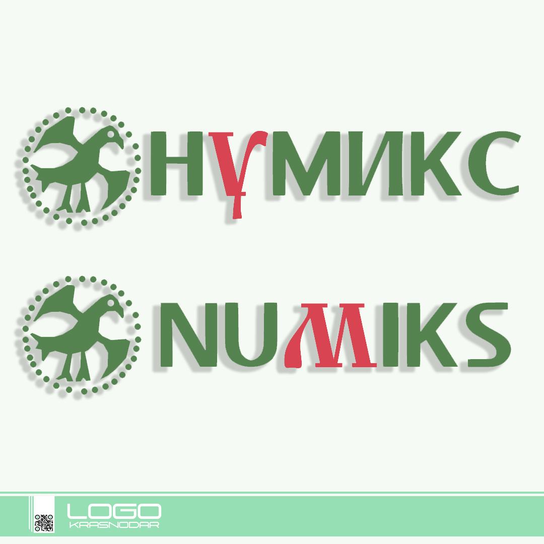 Логотип для интернет-магазина фото f_4265ec7123d7304a.jpg