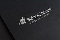 BizProConsult
