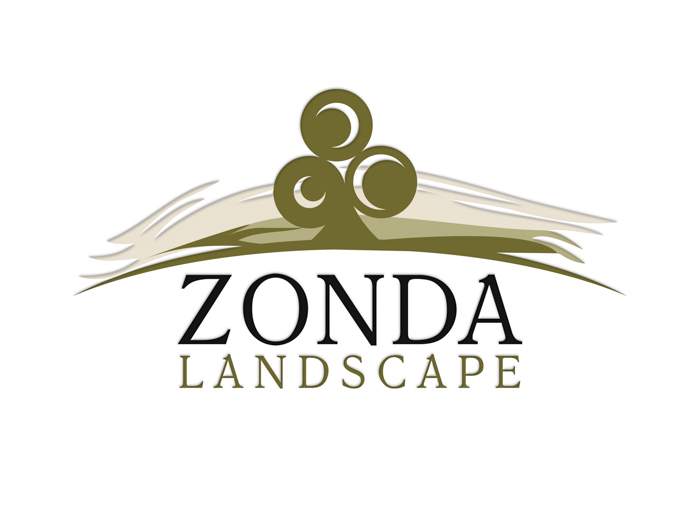 Zonda Landscape