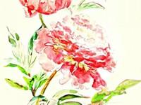 Рисунок  цветов, природы, живопись