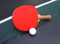 Интервью о настольном теннисе