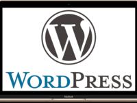 Натяжка верстки на cms wordpress