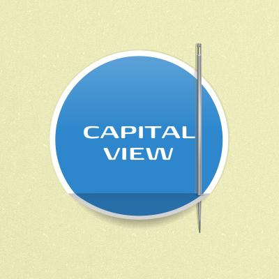 CAPITAL VIEW фото f_4fde405d78681.png